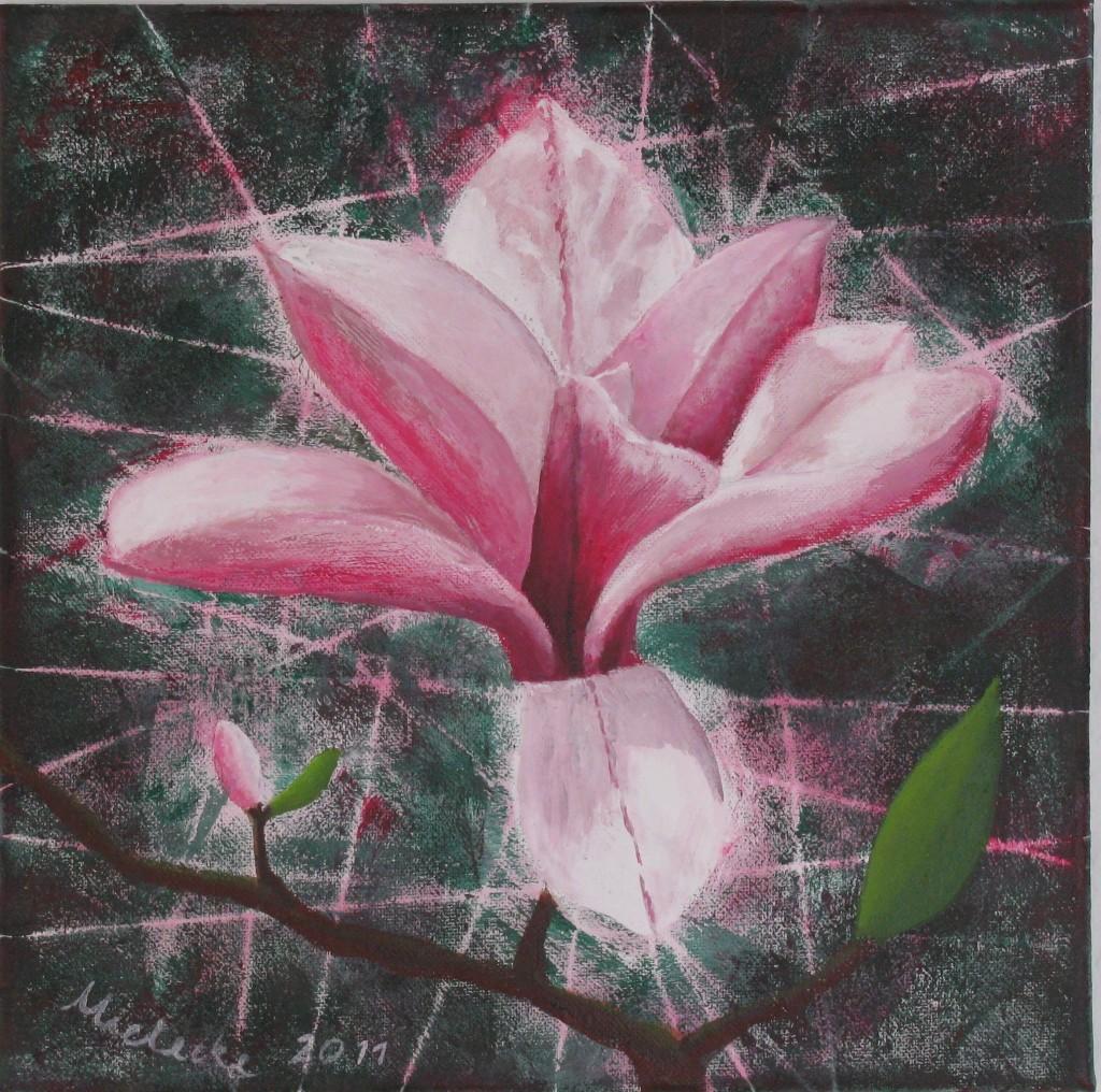 Magnolienblüte I