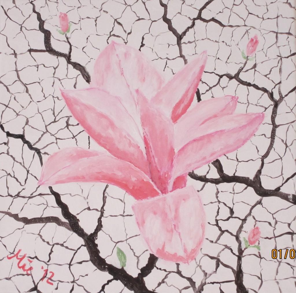 Magnolienblüte II