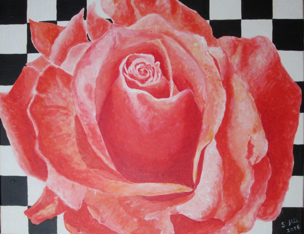 Rosenblüte auf schwarz-weißem Karo
